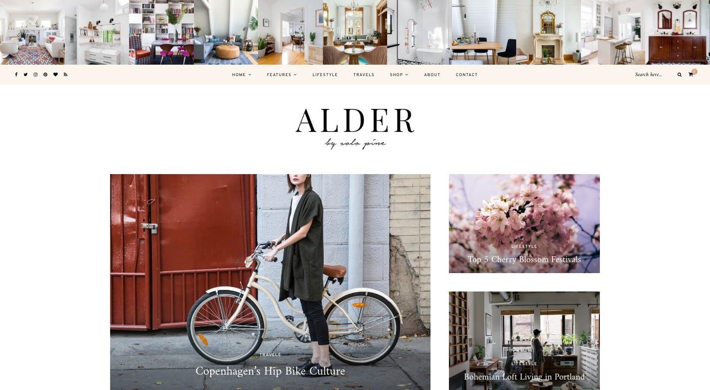 Alder WordPress Theme