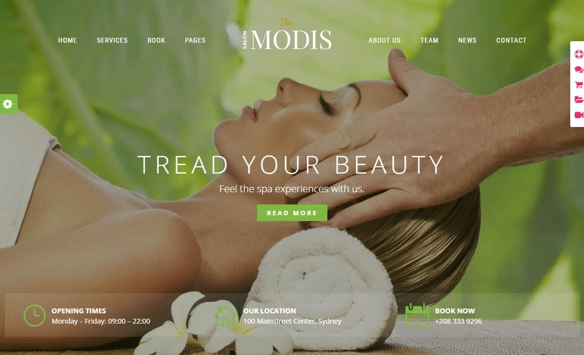 Modis WordPress Theme