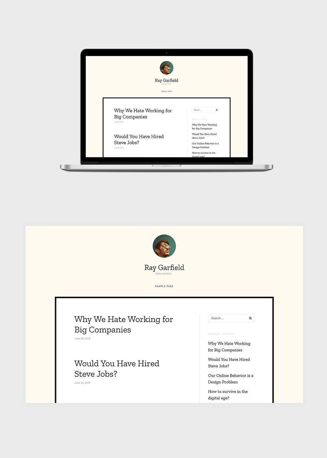 rayy free wordpress theme