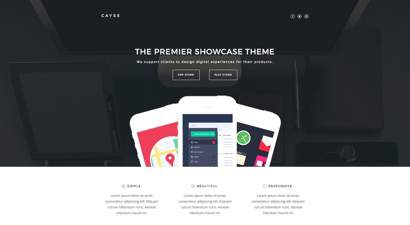 Cayse WordPress Theme
