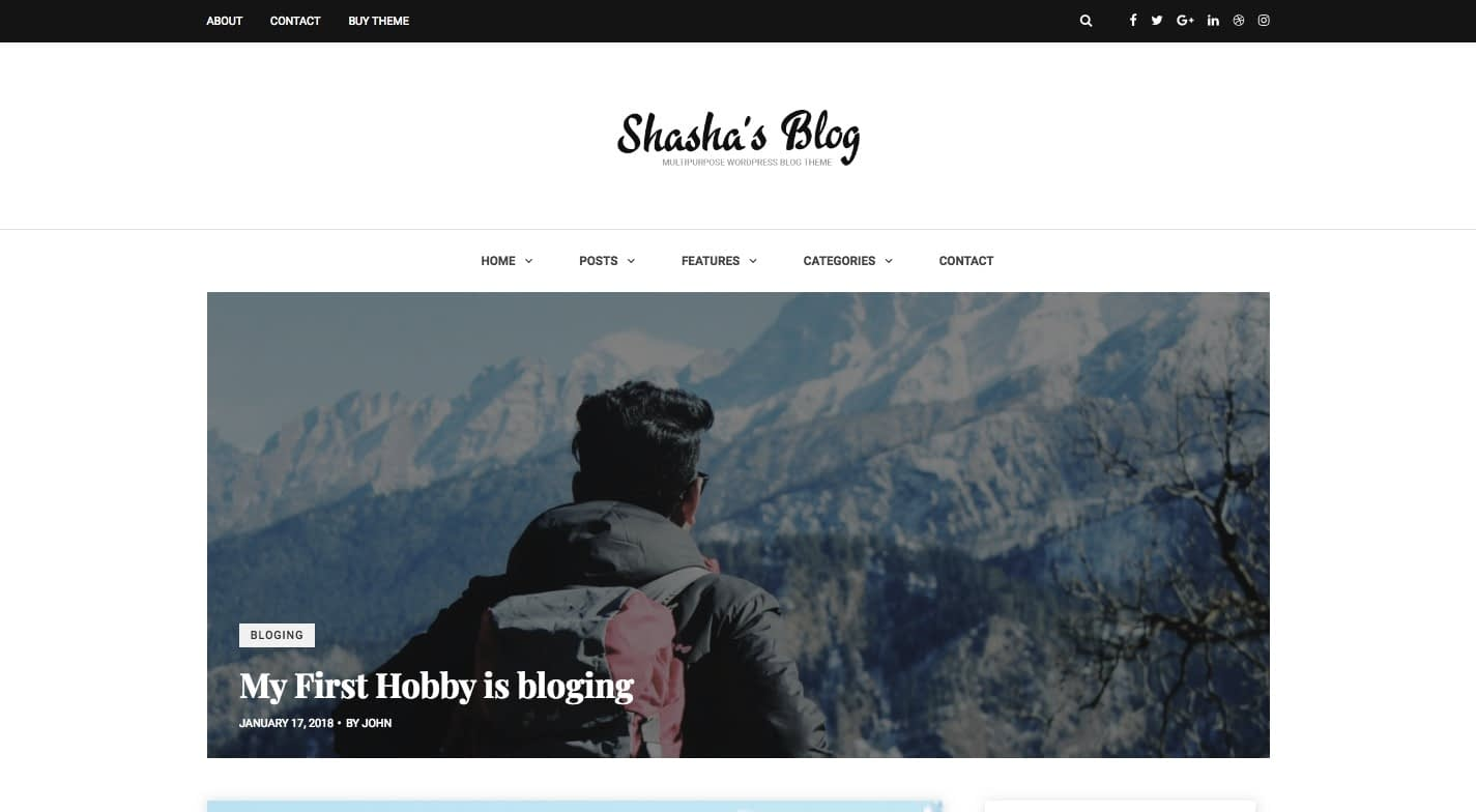 Shasha WordPress Theme