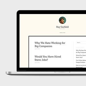 ray free wordpress theme